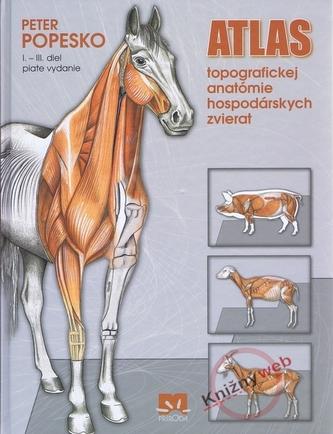 Atlas topografickej anatómie hospodárskych zvierat