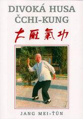 Divoká husa čchi-kung