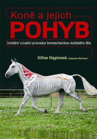 Koně a jejich pohyb