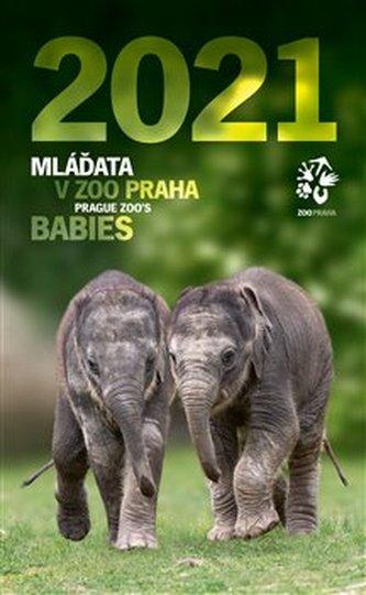 Nástěnný kalendář Zoo Praha 2021 - Mláďata v Zoo Praha