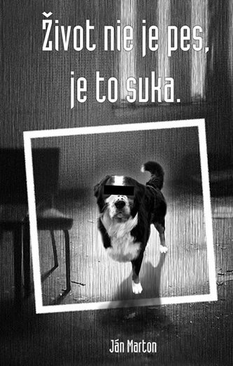 Život nie je pes, je to suka