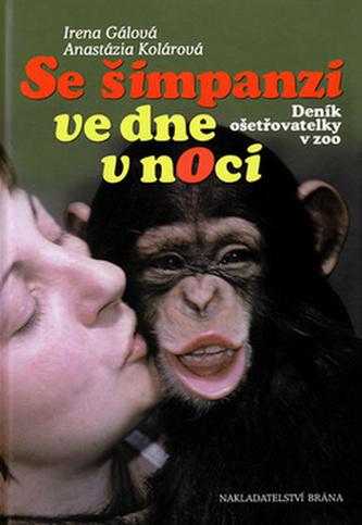 Se šimpanzi ve dne v noci