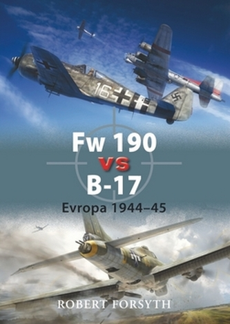 Fw 190 vs B-17