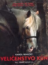Veličenstvo kůň
