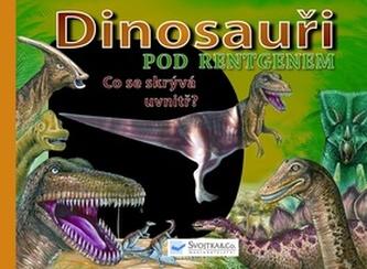 Dinosauři pod rentgenem