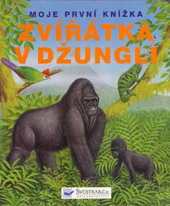 Zvířátka v džungli