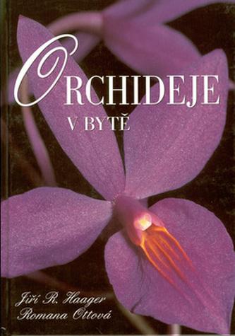 Orchideje v bytě
