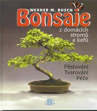 Bonsaje z domácích stromů a keřů