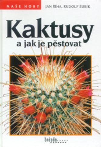 Kaktusy a jak je pěstovat