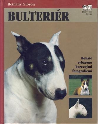 Bulteriér