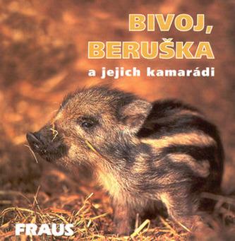 Bivoj a Beruška a jejich kamarádi