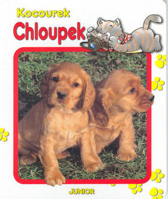 Kocourek Chloupek