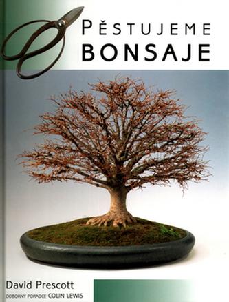 Pěstujeme bonsaje
