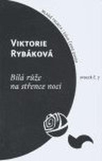 Bílá růže na střence noci