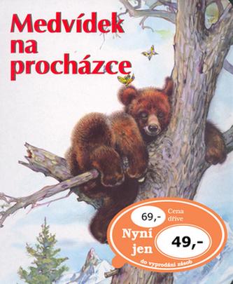 Medvídek na procházce