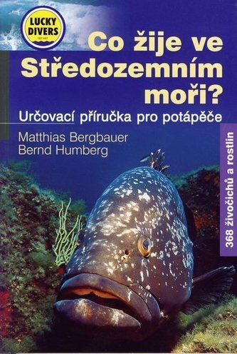 Co žije ve Středozemním moři?
