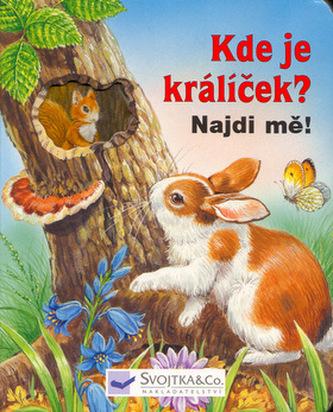 Kde je králíček? Najdi mě!