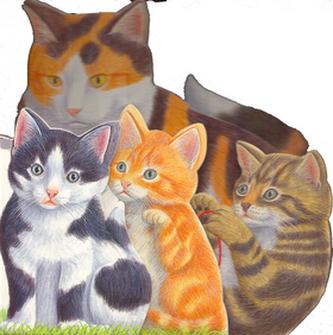 Koťátko a jeho rodina