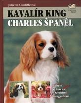 Kavalír King Charles Španěl