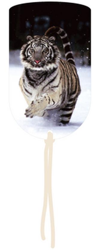Magnetická záložka Tygr - MZ 016