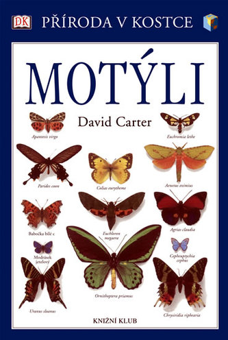 Motýli - Příroda v kostce