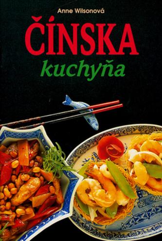 Čínská kuchyňa