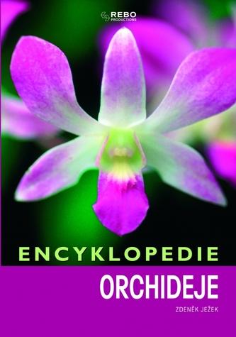 Encyklopedie - Orchideje