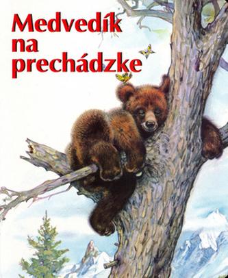 Medvedík na prechádzke