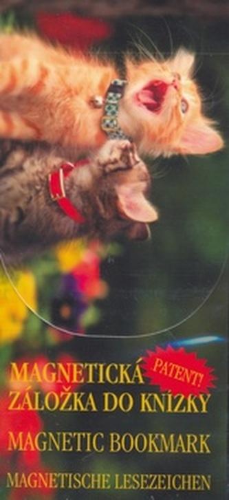 MZ 873 Koťata jarní
