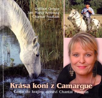 Krása koní z Camargue