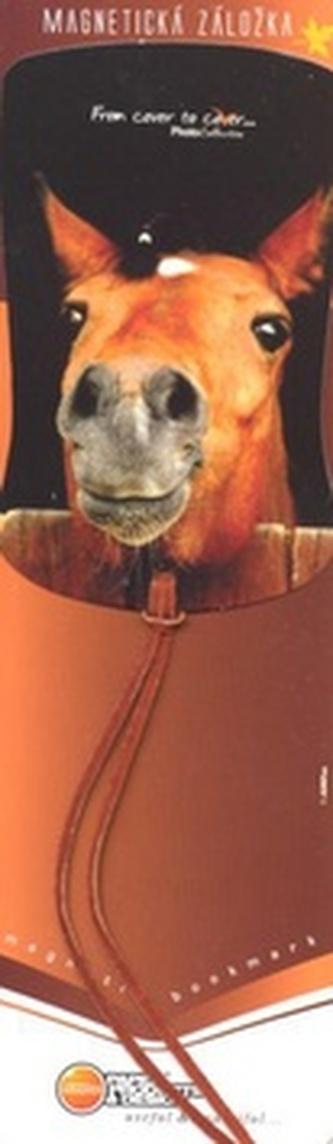 Magnetická záložka Kůň ve stáji - MZ 038