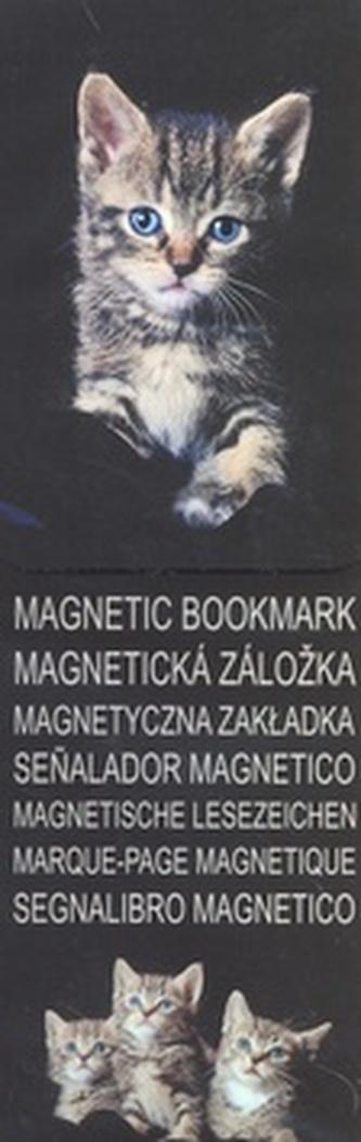 MZ 2930 Koťata 3 černobílá