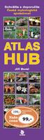 Atlas hub