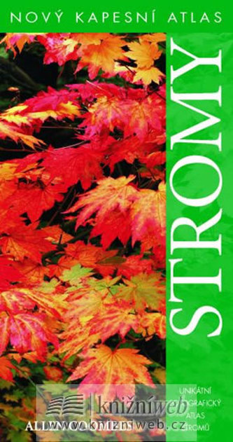 Stromy - Coombes Allen