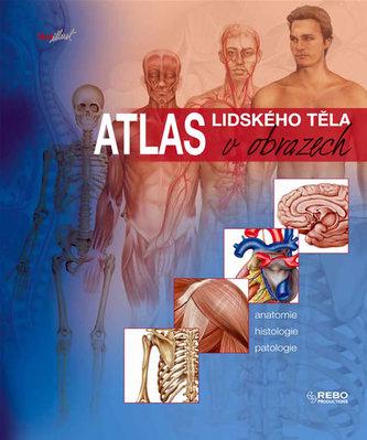 Atlas lidského těla v obrazech