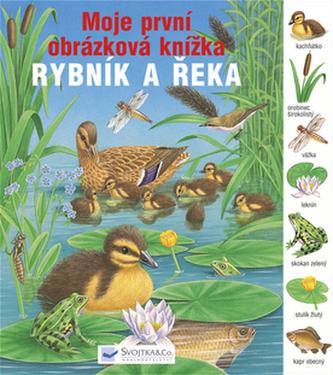 Rybník a řeka Moje první obrázková knížka