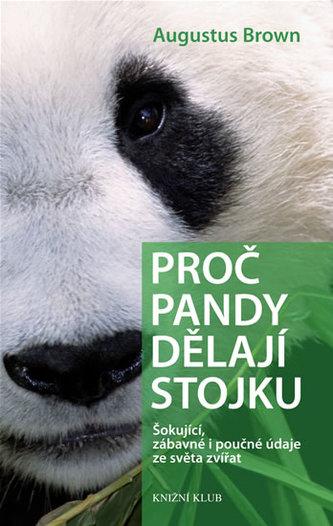 Proč pandy dělají stojku
