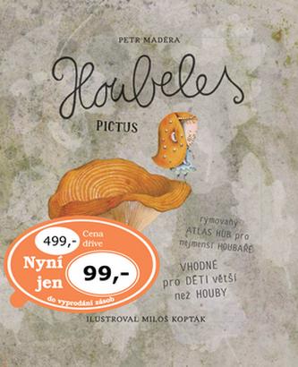 Houbeles pictus