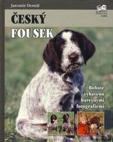 Český Fousek