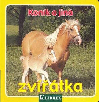 Koník a jiná zvířátka