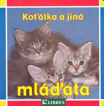 Koťátka a jiná mláďata