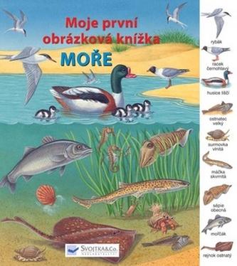 Moře Moje první obrázková knížka