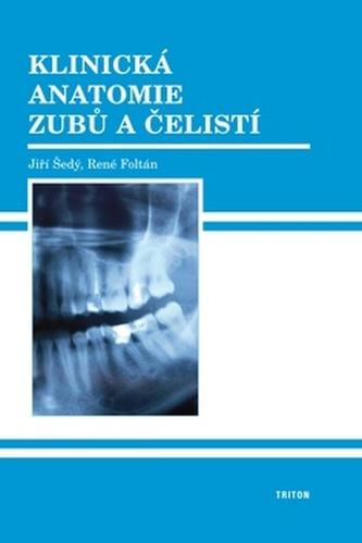 Klinická anatomie zubů a čelistí