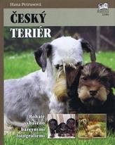 Český terier
