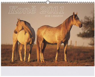 Koně 2011 - nástěnný kalendář
