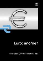 Euro: ano/ne?