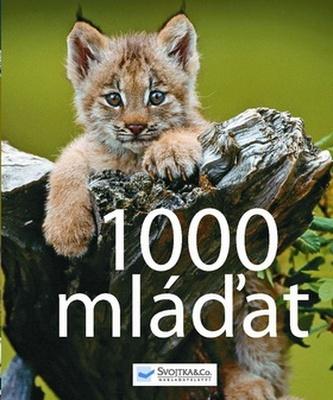 1000 mláďat