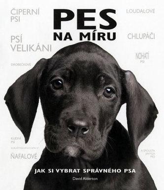 Pes na míru