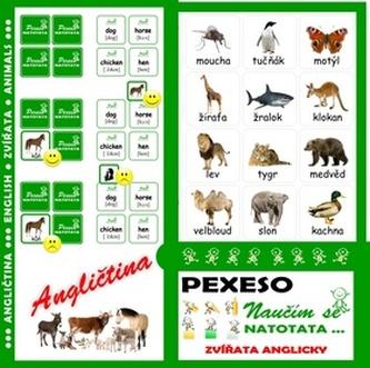 Pexeso Natotata Zvířata anglicky I
