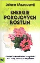 Energie pokojových rostlin